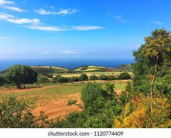 Fields and Mediterranean Sea in Tipaza, Algeria