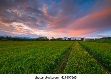 Fields and mountains in Turiec region, central Slovakia.