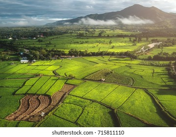 Fields in Nan Thailand nature outdoor landscape at Tanong homestay in Thailand
