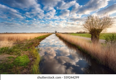Fields near the water canal at sunrise in Netherlands. Tree against colorful blue sky with clouds. Spring landscape in Holland. Rural scene. Cloudy sky reflected in water. Nature background