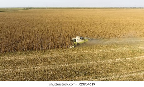 Fields next to Krasnodar, Russia - September 15, 2017: Harvester harvests corn. Collect corn cobs with the help of a combine harvester. Ripe corn on the field