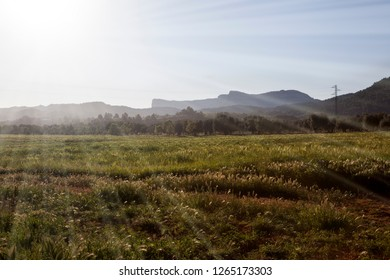 Fields of Teruel. Spain