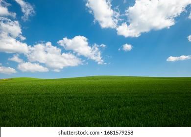 The fields of Thessalian plain