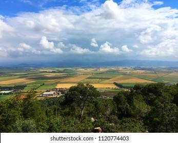 Fields in Tipaza, Algeria