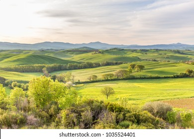 Fields with valleys and hills