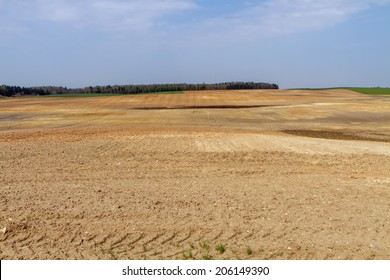 fields in the village