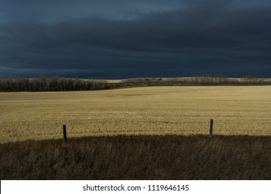 Fields willed with golden light and dark clouds