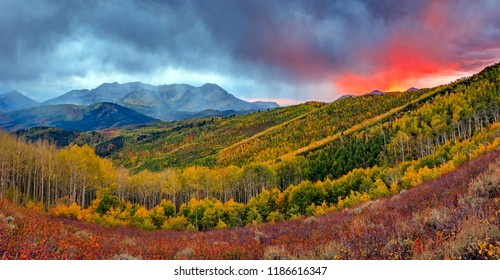 Fiery Fall Panorama in the Wasatch Back, Utah, USA.