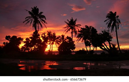 Fiery skies at sunset with reflection in water A breathtaking sunset sets the skies on fire reflected in pools of water in the ground, silhouetting coconut trees in Saipan, Northern Mariana Islands.