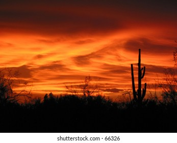 Fiery summer sunset in southwestern United States