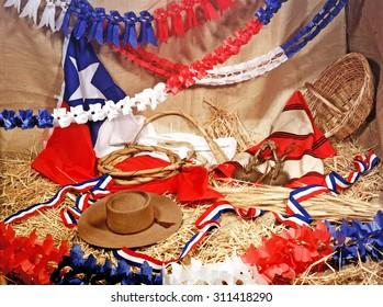 Fiesta chilena 18