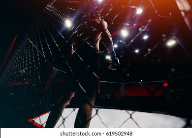 fighter stands in the ring before the fight, preparing for the battle of the box. Concept of confidence. high contrast and monochrome color tone. Toning.