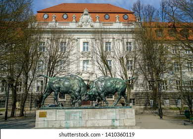 Fighting Bison Sculptural Composition Two Large Figures Bison Made German. 2019.03.