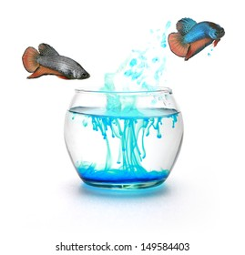 Fighting fish jumping to change color