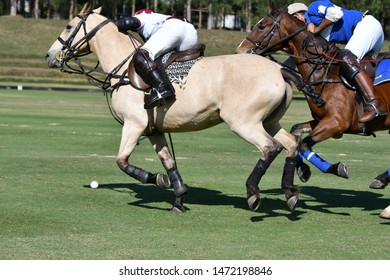 Fighting with horse polo players in polo match.