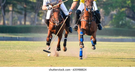 Fighting with horse polo players in polo matches.