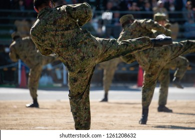 Fighting Japanese soldier(Japan Ground Self-Defense Force)