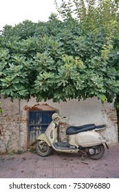 Figs and old motorbike in village, Hersonissos Creete, Greece, 20 September 2017