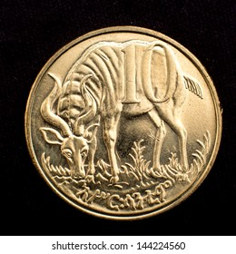 Figure of an antelope on the face of the Ethiopian ten cent coin