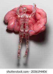 Figure clinging to brain model