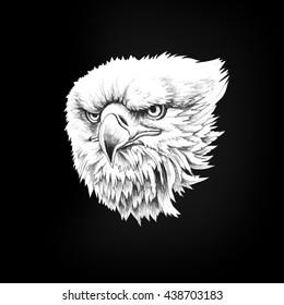 Figure head bald eagle isolate on a black background. Pencil illustration.