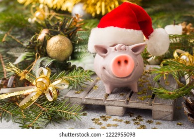 Figure pig in a Santa Claus hat on the background of Christmas trees. Christmas decorations. New year concept.