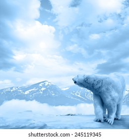 Figure of a polar bear on high mountain landscape