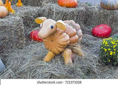 """Figure of a sheep made of large ripe pumpkins. Festival """"Golden Autumn"""". September 2017, Moscow, Russia."""