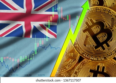 Fiji flag and cryptocurrency growing trend with many golden bitcoins