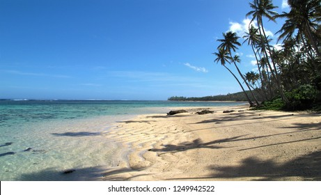 Fiji island best beach with white sands and palm trees