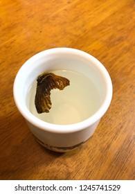 Fin sake(rice wine) of blowfish in winter