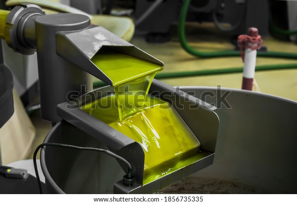 The final phase of extra virgin olive oil production with modern equipment