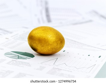 Finance and investment growth concept with golden egg