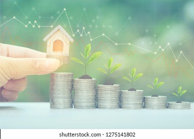 Finance,Woman hand holding model house with plant growing on stack of coins money and graph on natural green background, Interest rates and Banking concept