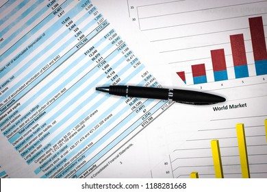 Financial analysis and income statement, business plan.