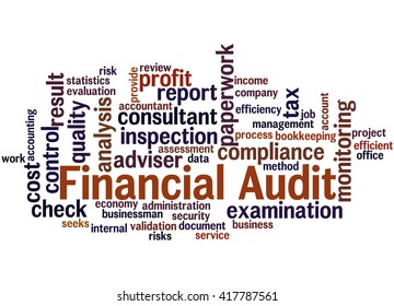 Financial audit, word cloud concept on white background.