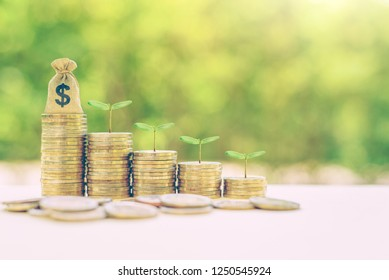Financing sustainable growth, financial concept : Dollar money bag / green sprout grow on coins, depicts passive income, wealth management from revenue growth, common stock invest for dividend payout