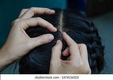 Find lice, cleaning the hair on the head by hands.