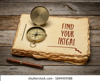 find your ikigai - inspirational handwriting in a retro sketchbook with a stylish pen and vintage brass compass against rustic wood, Japanese concept of a life purpose