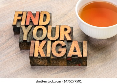 find your ikigai word abstract in vintage letterpress wood type with a cup of tea - Japanese concept  of a reason for being