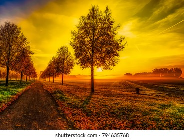 Fine art colorful scenic glorious autumn sunrise on an alley with a dramatic sky and a cycle path with leaves - seasonal impression in fantasy surrealistic painting style,alley towards the golden sun