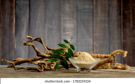 Fine art still life with Eurycoma longifolia Jack on an old wooden table.