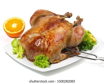 Fine Meat - Christmas Turkey on white Background