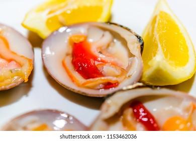 Fine shells, Malaga, Andalusia, Spain, Iberian Peninsula