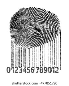 Fingerprint and bar code on white background. Individuality concept.