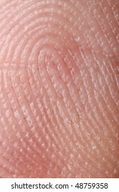 Fingerprint - extremely close up  micro-photography