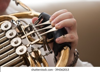 The fingers of the musician playing the French horn