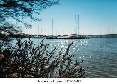 Finland Baltic Sea harbor Espoo sailing boats haven