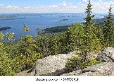 Finland Nature of national park Koli