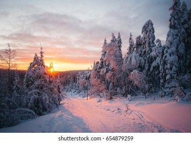 Finland nature at winter near ski mountain tundra forest.